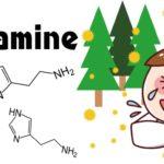 花粉症の発症メカニズムは?ヒスタミンって何?