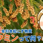 花粉症を引き起こすアレルギー物質「ヒスタミン」って何?